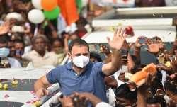 Rahul Gandhi instigated violence, Rahul Gandhi