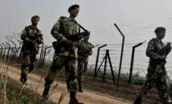 US lawmaker welcomes India-Pak ceasefire agreement