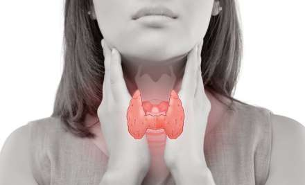 Know your thyroid glands and how to take care of them