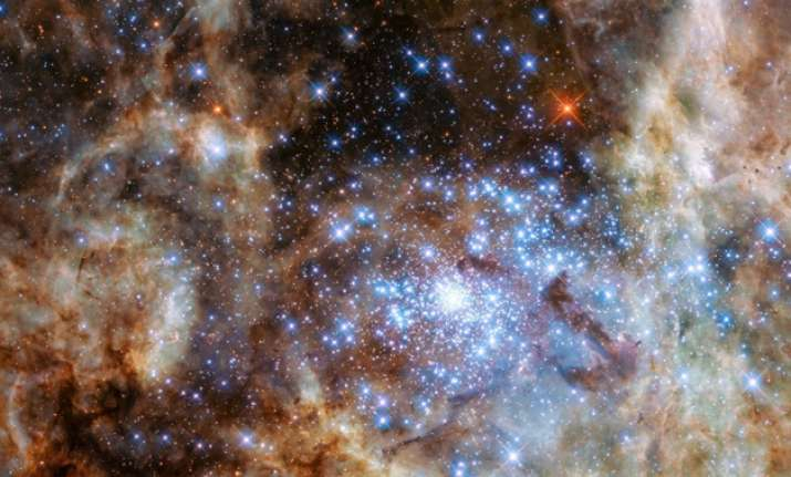 Group of stars 100 times larger than Sun