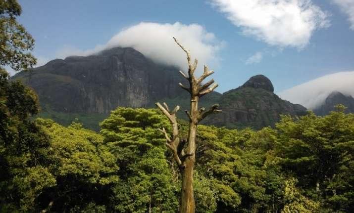 Agasthyamala Biosphere Reserve