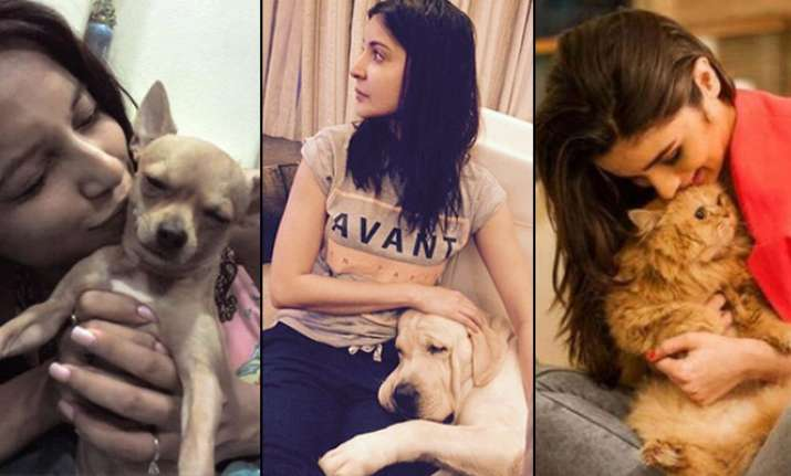 These Bollywood and TV celebrities with their 'Pets'