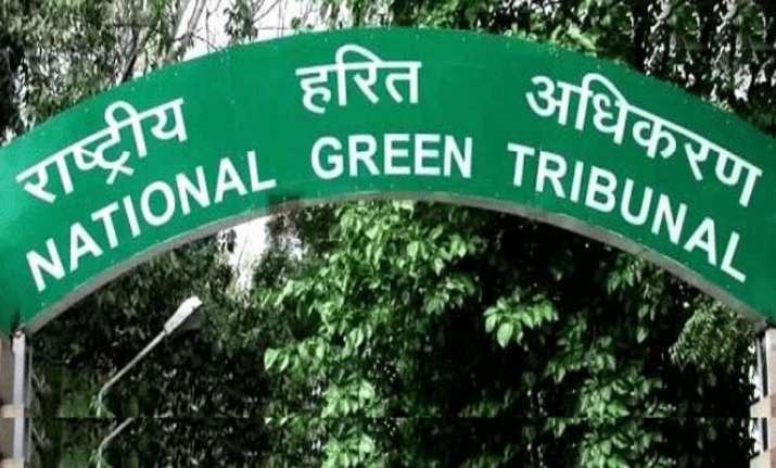 NGT slams DDA for casting aspersions on panel's findings on