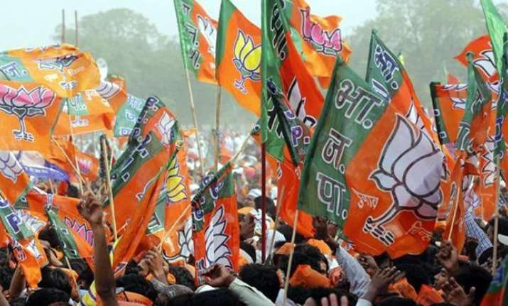 LK Advani, Sonia Gandhi among star campaigners for BJP,