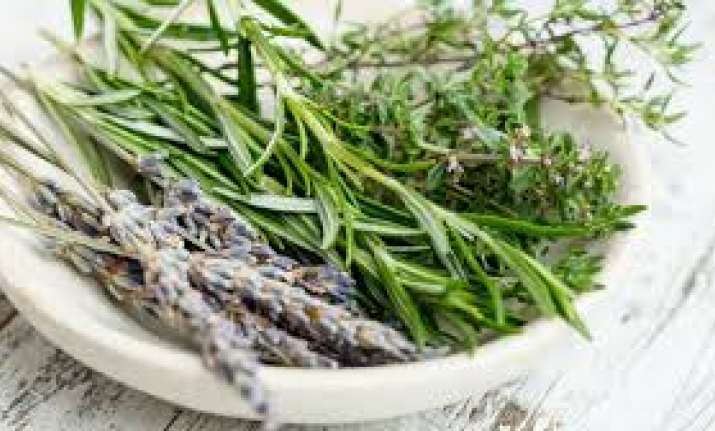 Want to live healthier, happier life? Include these 6 herbs