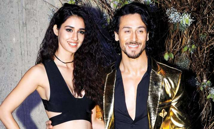 Image result for Tiger and Disha