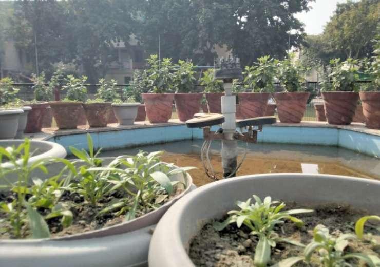 (Image Resized for Web) - India Tv