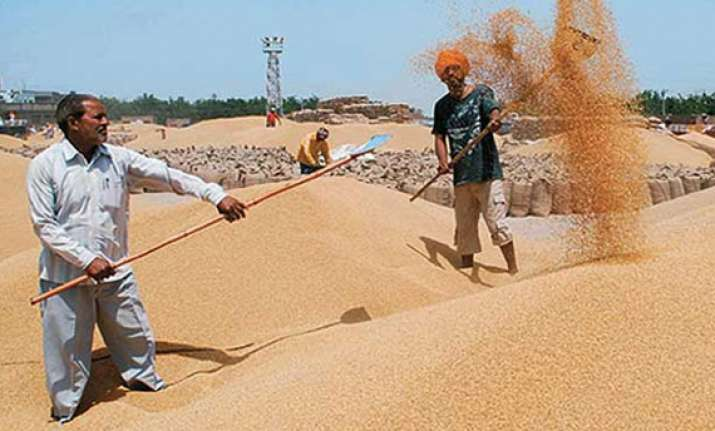 govt announces wheat msp hike of rs 65 per quintal