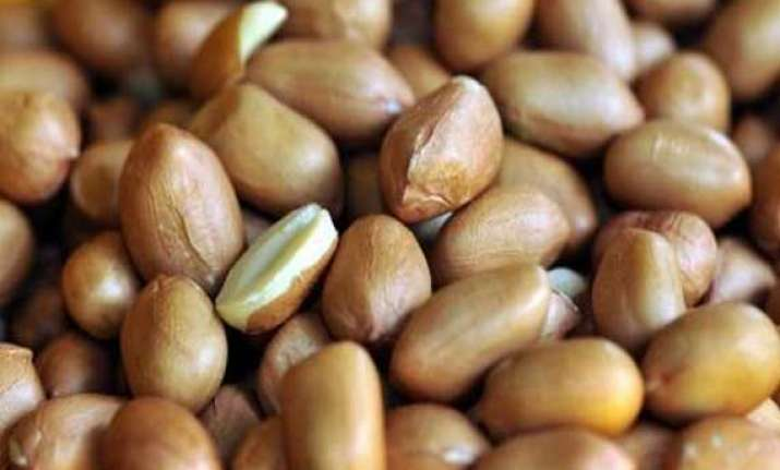 groundnut oil regains on renewed demand