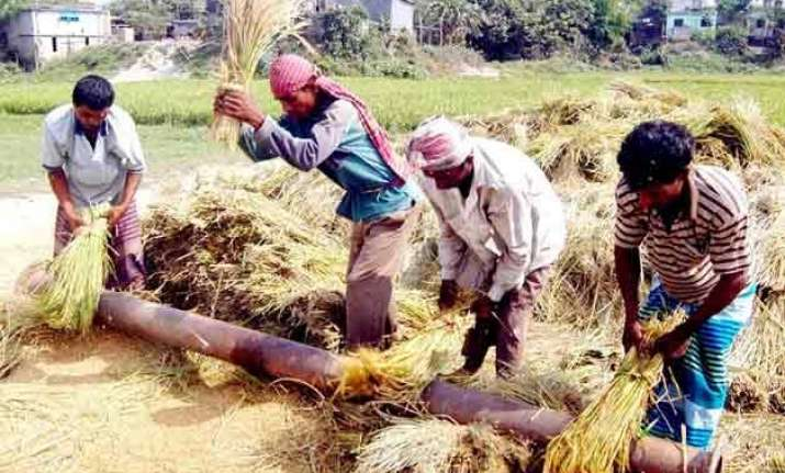 foodgrain output to fall by 5 to 251 million tonnes in 2014