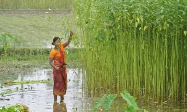 gom to meet on jute situation on may 19