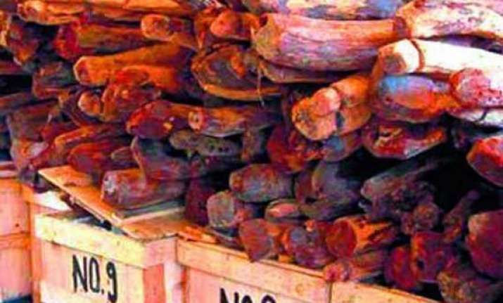 andhra earns rs.991 crore from e auction of red sanders