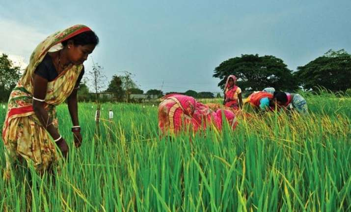 economic survey calls for big changes in agri sector bats