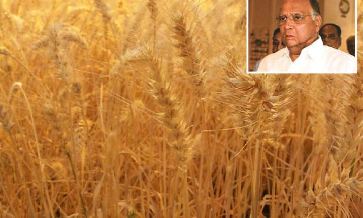 india may produce record over 86 mn tonnes of wheat sharad