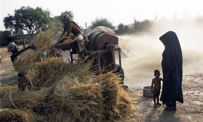 record 250 mt foodgrain output this year