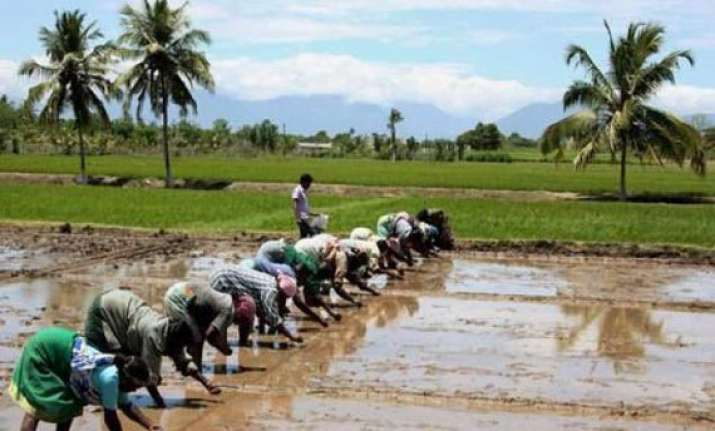 retail inflation for farm rural workers eases in sept