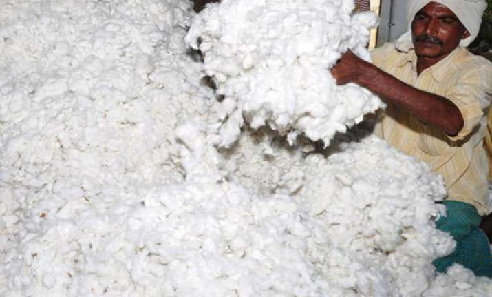 roll back on cotton export ban govt. issues notification