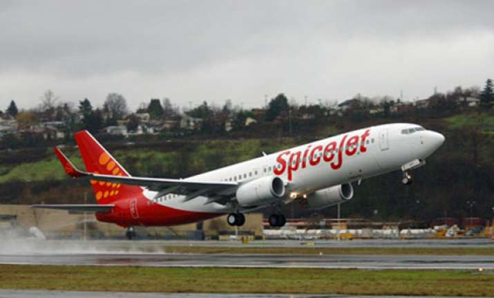spicejet launches new travel options