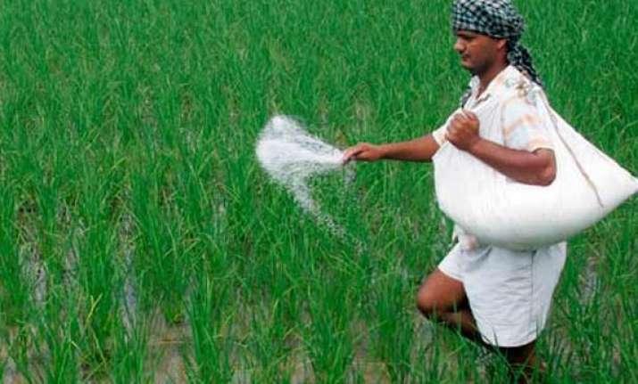 subsidy should be slashed economic survey
