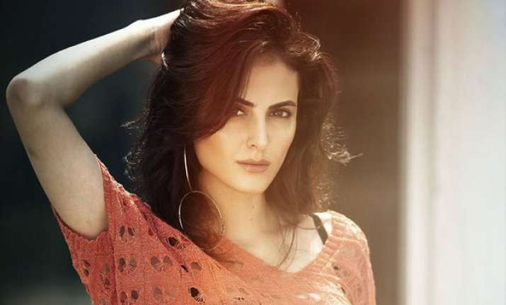 mandana karimi waiting to enter bollywood formally