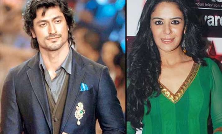 mona singh and vidyut jamwal end their two year old