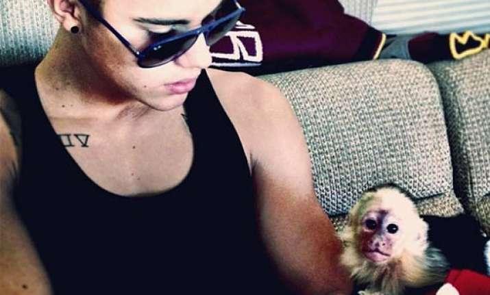 justin bieber pays 10 000 bill for pet monkey