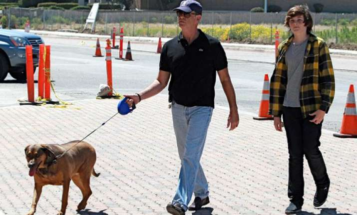 pierce brosnan supports neutering of dogs