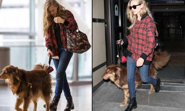 shocking amanda seyfried takes dog on flights