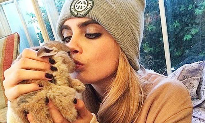 cara delevingne s rabbit has instagram account