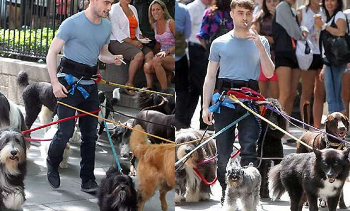 daniel radcliffe s hands free dog walk