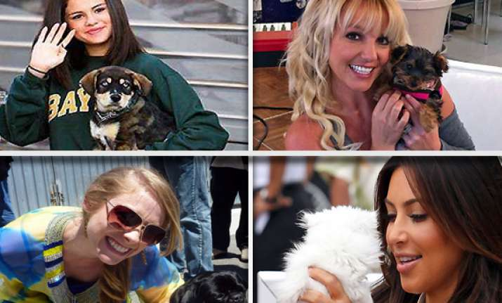 pets that celebs love to own