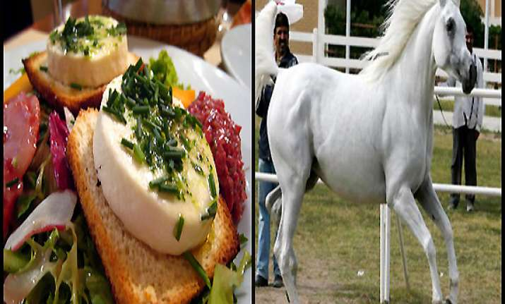 hidden ingredient in european foods a horse