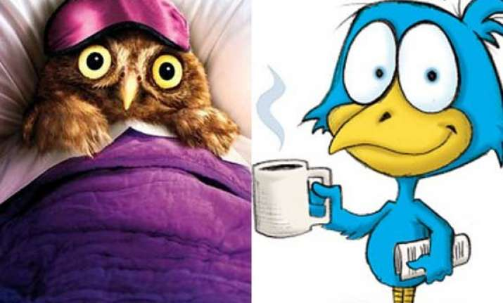 early bird vs night owl