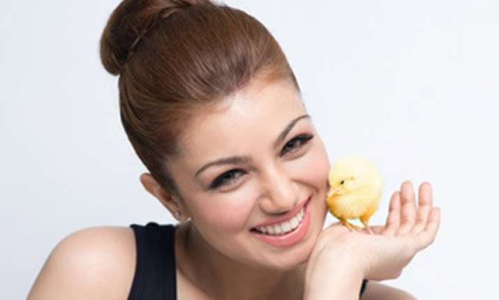 ayesha takia poses with a chick for peta