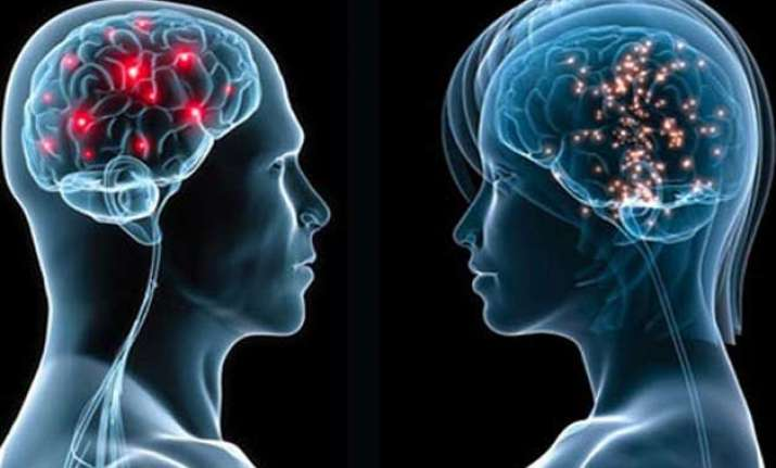 male female brains operate differently study