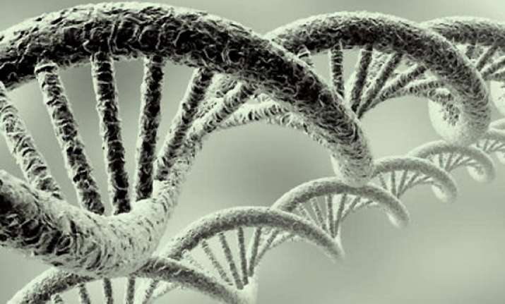 telomeres the new test for aging see pics