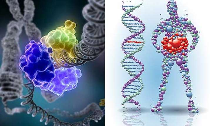 metabolism is linked with gene regulation reveals a study