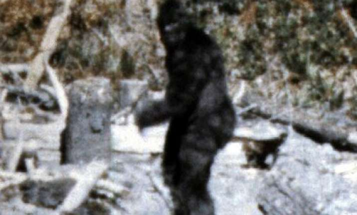 bigfoot is part human who had sex with human females 15 000