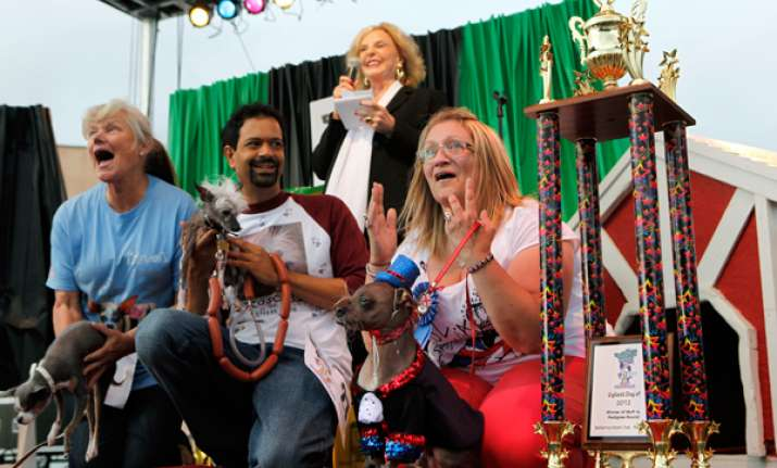 contest held for world s ugliest dog in california