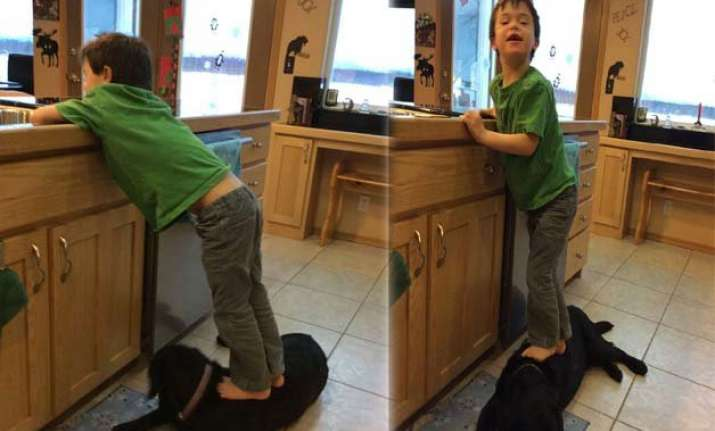 pic of sarah palin s son standing on dog draws reaction