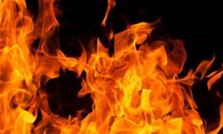 cat on fire starts new york apartment blaze two people