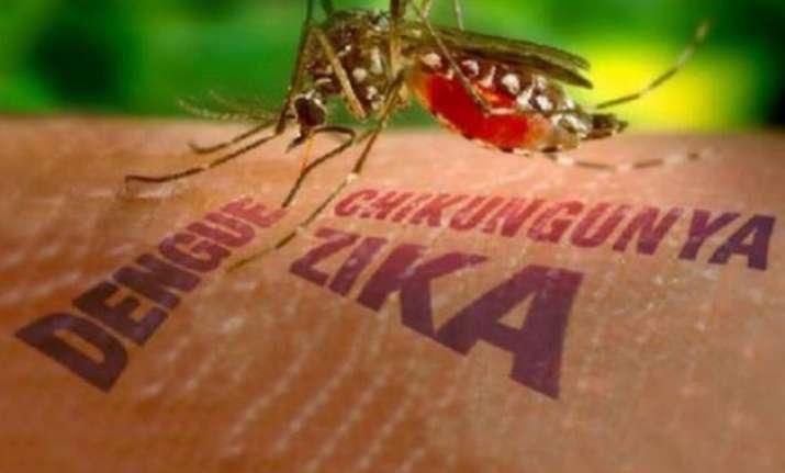 world facing zika virus threat warns who india readies