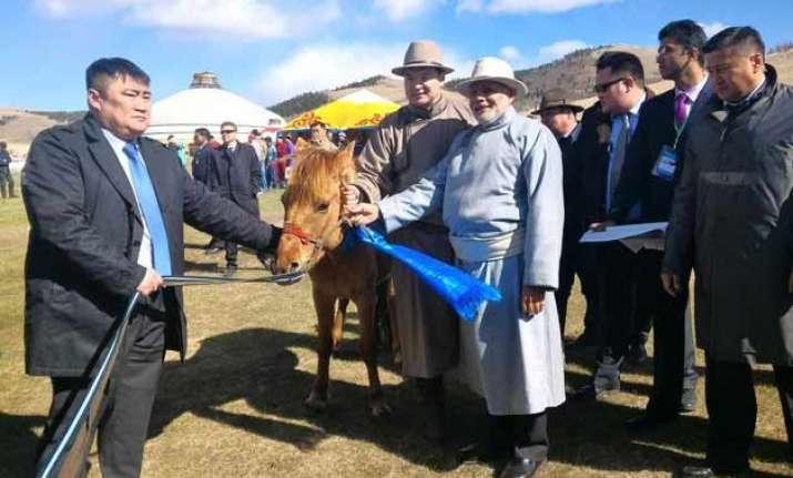 mongolian pm gifts a horse to pm narendra modi