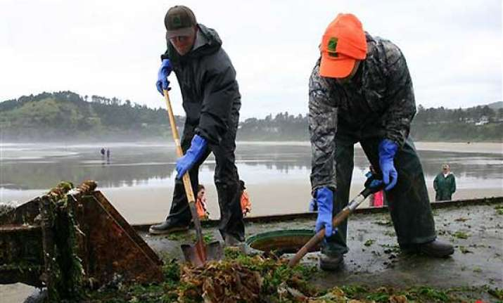 invasive species ride tsunami debris to us shore
