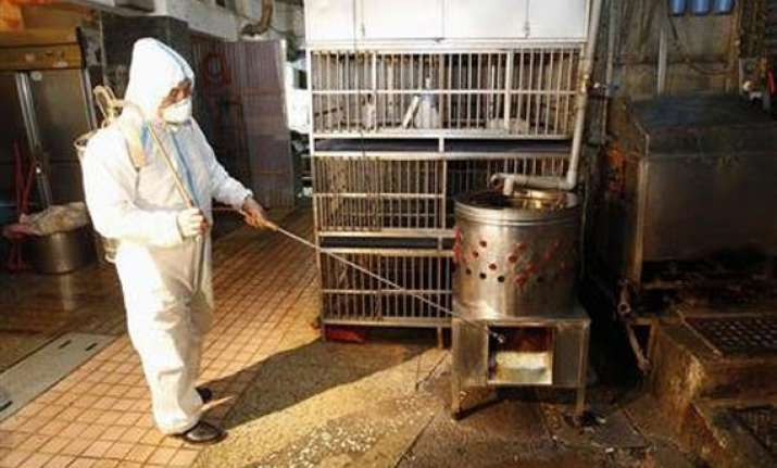 latest bird flu strain death rate reaches 277