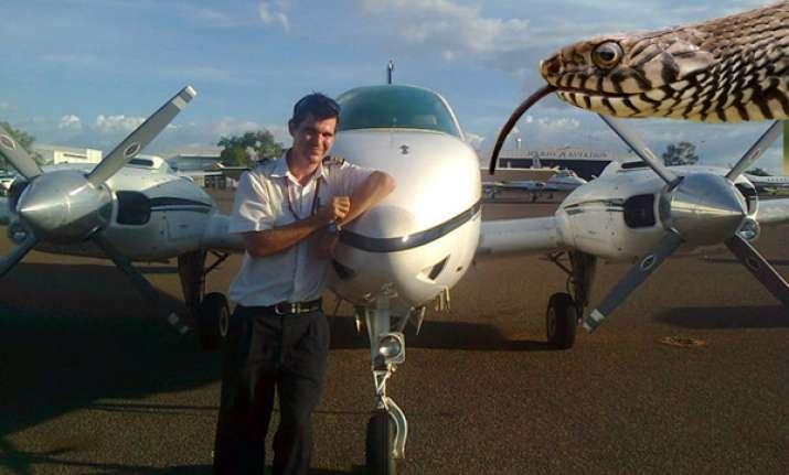 pilot turns back after snake pops out of dashboard