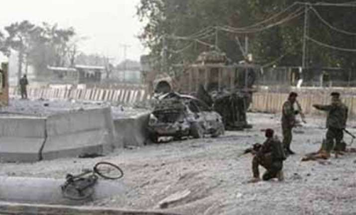 taliban bomber kills nine at afghan nato base
