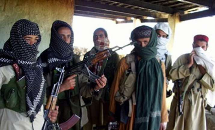 talk of peace stirs up qaida taliban tensions