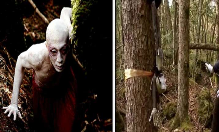 unexplained mystery of japan s forest of death