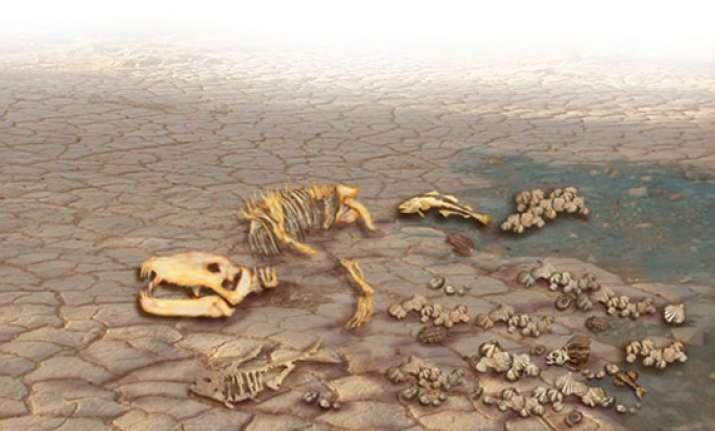 world on the verge of mass extinction